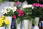 Продажа цветов в Баку