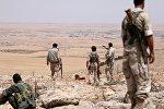 Suriya ordusu, arxiv şəkli