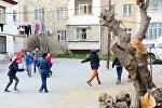 Yasamal rayonu Əhməd Cəmil küçəsindəki 25, 27 və 29 saylı binaların həyətində kəsilmiş ağaclar