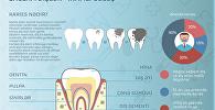 Dişlər