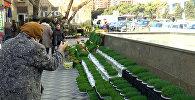 Novruz sovqatlarının qiyməti 25% bahalaşıb
