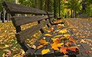 Payız, arxiv şəkli