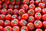 Pomidor, arxiv şəkli