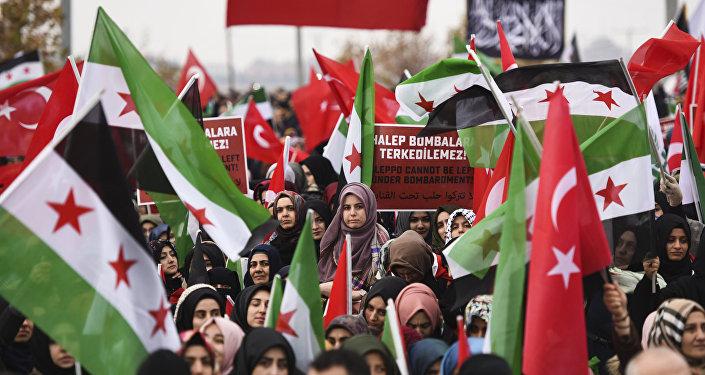 Протестующие с флагами Сирии и Турции во время демонстрации в Рейханли в Хатае, недалеко от сирийской границы, 17 декабря 2016 года