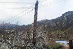 Электрический столб в деревне Аширалылар Товузского района