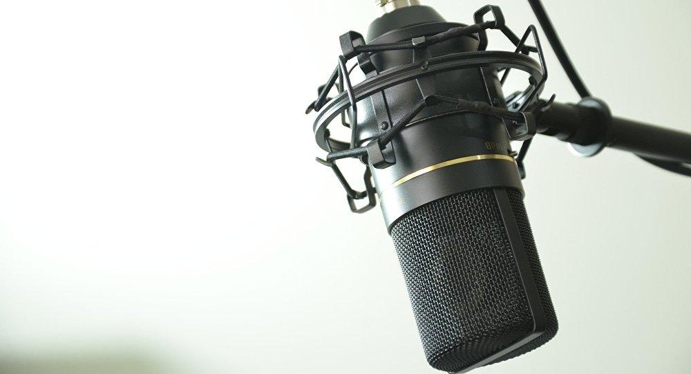 Студийный микрофон, фото из архива