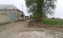 Жилой массив в городе Говлар Товузского района