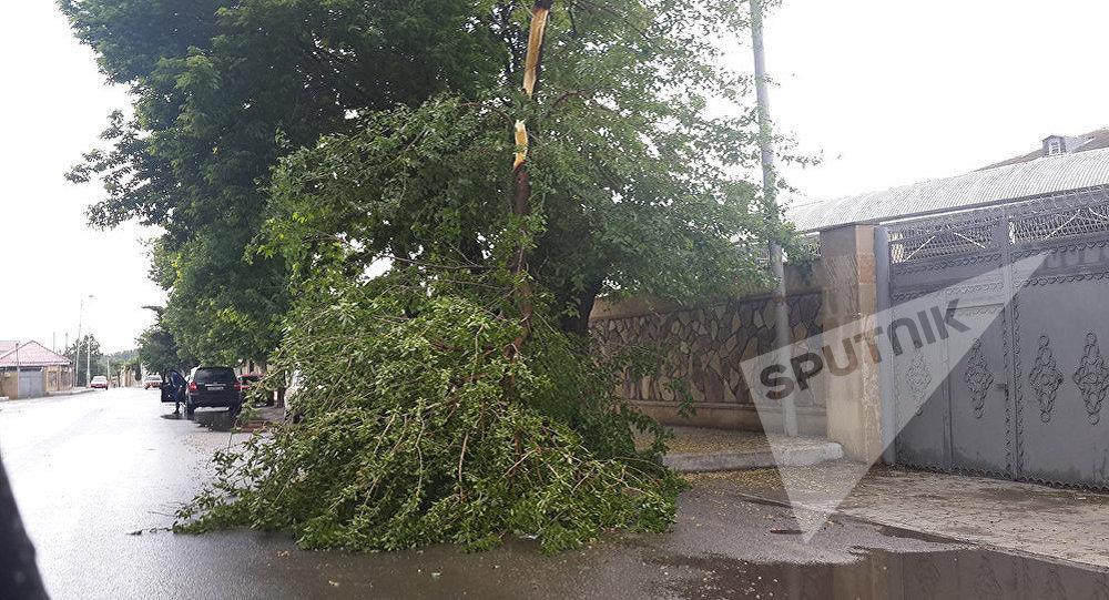 Güclü küləklə müşayiət olunan yağış rayonda ciddi fəsadlar törədib