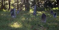 Безымянные могилы, фото из архива
