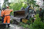Работники коммунальных служб убирают поваленные деревьев в одном из дворов Москвы, 30 мая 2017 года