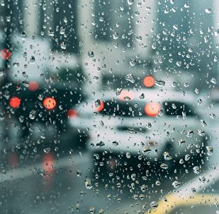 Дождь, фото из архива