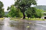Ураган нанес серьезный ущерб местным хозяйствам Габалинского района