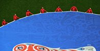 Логотип Кубка конфедераций FIFA 2017 на поле перед началом матча Кубка конфедераций-2017 по футболу между сборными Новой Зеландии и Португалии