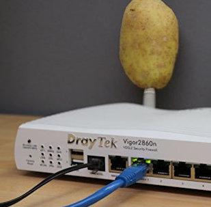 İnternet routerin antenlərinə taxılmış kartoflar
