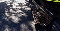 Пустая скамейка в бакинском парке, фото из архива