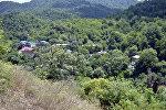 Masallı rayonu