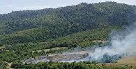 Пожар в Гирканском национальном парке