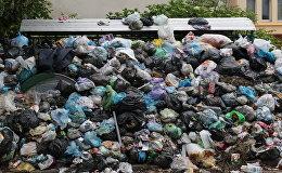 Невывезенный мусор на свалке, фото из архива