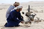 Арабский охотник, архивное фото