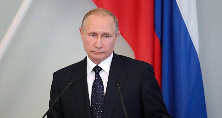 Президент РФ Владимир Путин во время пресс-конференции с президентом Финляндии Саули Ниинистё в городе Савонлинна