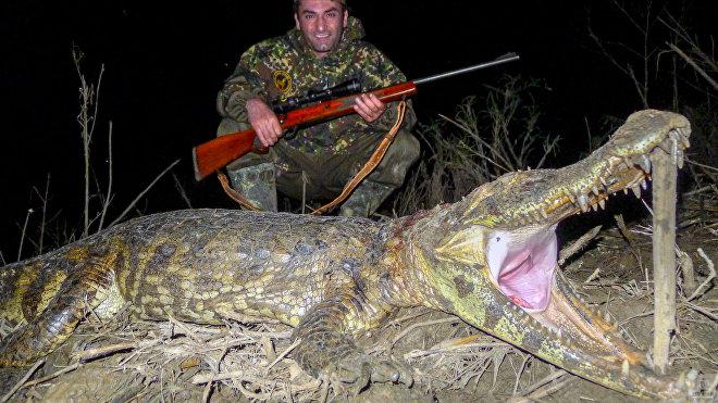 Риск на охоте присутствует всегда, где бы ты ни охотился: в лесу, горах или джунглях