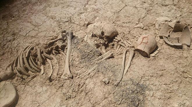 Археологические раскопки в Лерикском районе Азербайджана