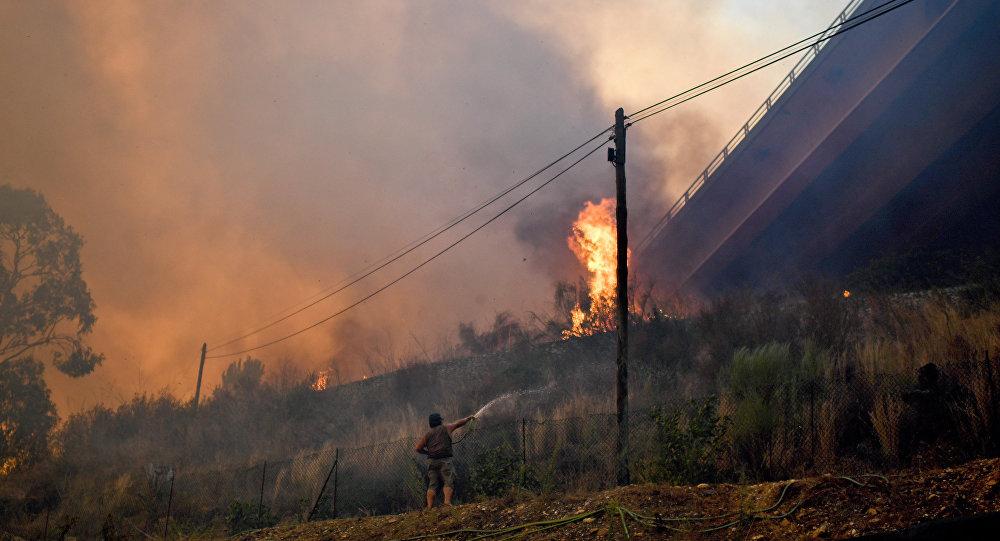 Лесные пожары в Португалии, 11 августа 2017 года