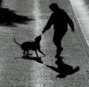 Силуэты женщины и собаки, фото из архива