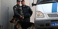 Сотрудники правоохранительных органов РФ, фото из архива