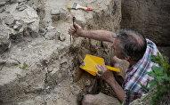 Археологические раскопки, фото из архива