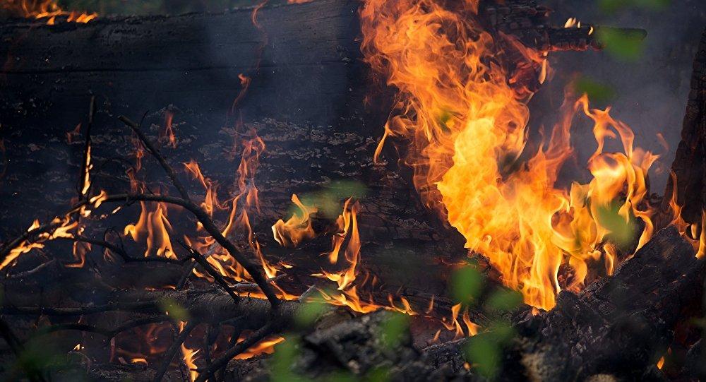 Действует ли в бурятии противопожарный режим