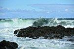 Okean, arxiv şəkli