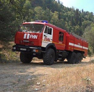 Сотрудники МЧС Азербайджана участвуют в тушении пожаров в Боржоми-Харагаульском лесу Грузии