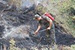 Сотрудник МЧС Азербайджана во время тушения лесных пожаров, фото из архива