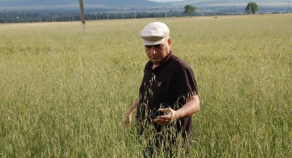 Vahid Məhərrəmov - Kənd təsərrüfatı üzrə ekspert