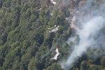 Работы по тушению пожара в лесной зоне Габалинского района