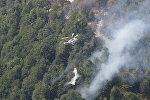 Тушение лесного пожара в Габале, фото из архива
