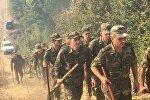 Продолжаются работы по тушению лесных пожаров в Габалинском районе