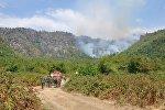 Работы по тушению лесных пожаров, архивное фото