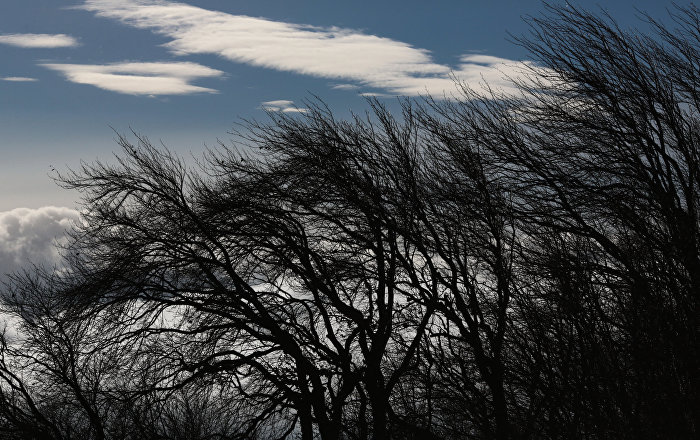 Ветер, фото из архива