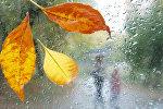 Payız yağışı