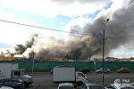 Пожар в ТЦ Синдика