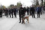 Türkiyə polisi, arxiv şəkli