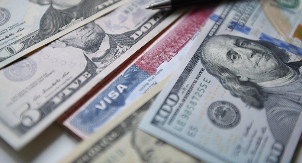 Viza dollar