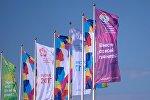 Флаги XIX Всемирного фестиваля молодежи и студентов в Сочи