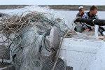Рыба, пойманная браконьерами сетями, на борту рыбоохранного катера, фото из архива