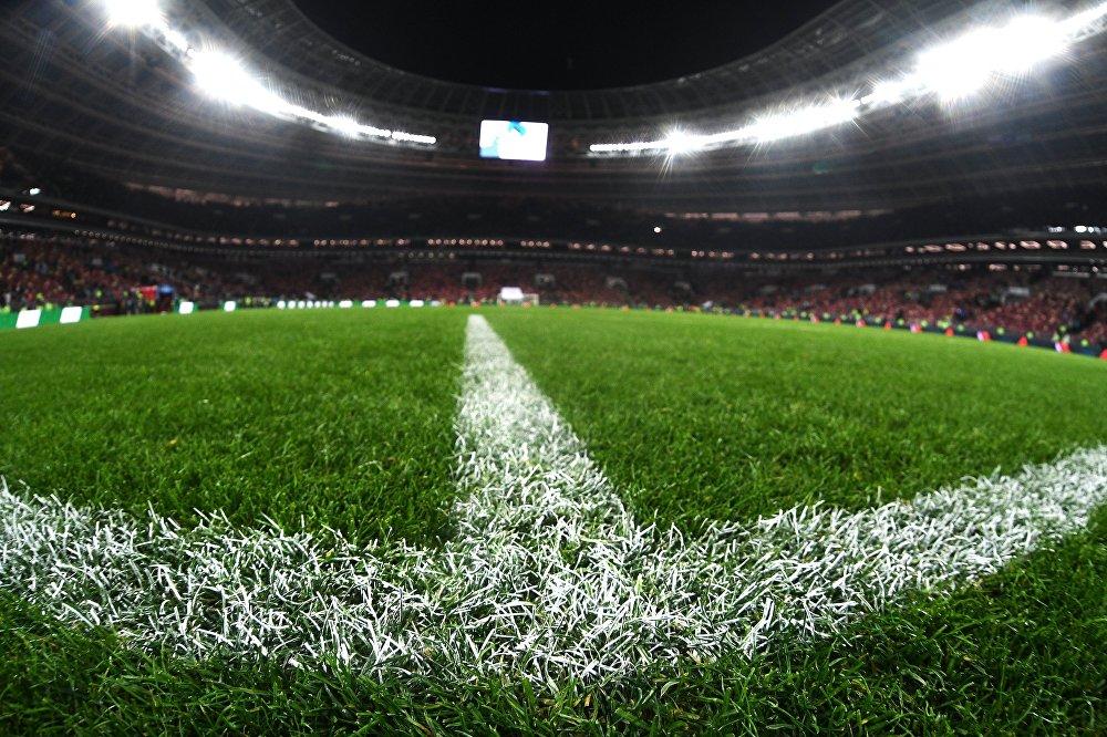 Травяное покрытие на футбольном поле стадиона Лужники во время товарищеского матча по футболу между сборными России и Аргентины