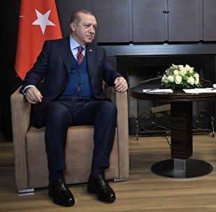 Президент РФ Владимир Путин и президент Турции Реджеп Тайип Эрдоган во время встречи, 13 ноября 2017 года