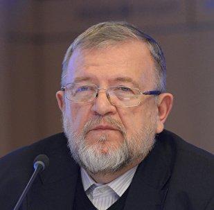 Политолог Владимир Зорин