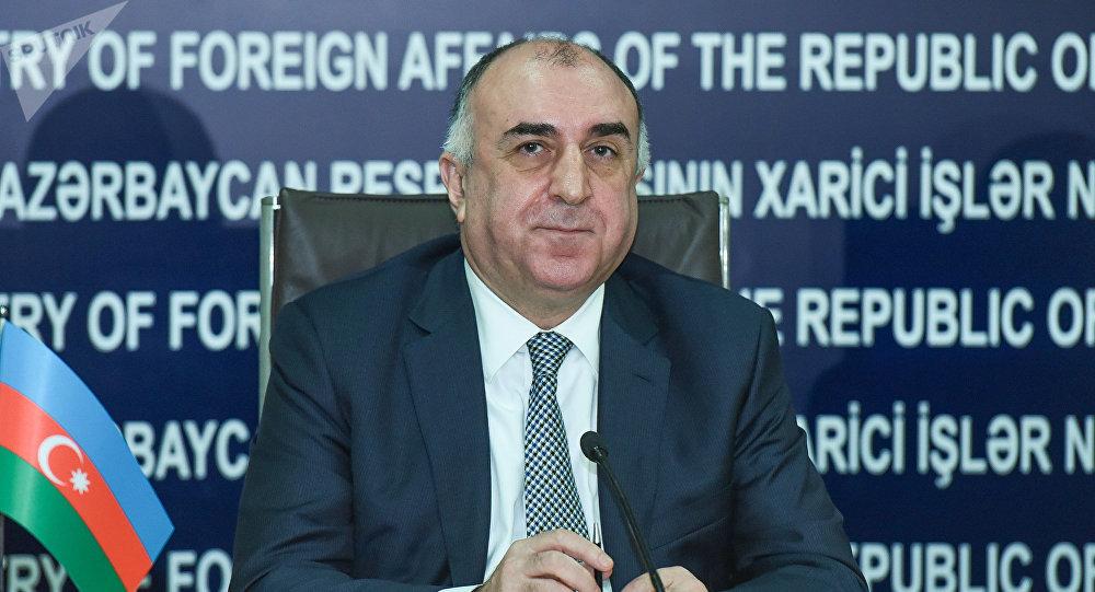 Мамедъяров о воздействии контракта сЕС натуризм